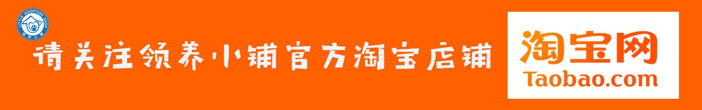 Taobao Ad3